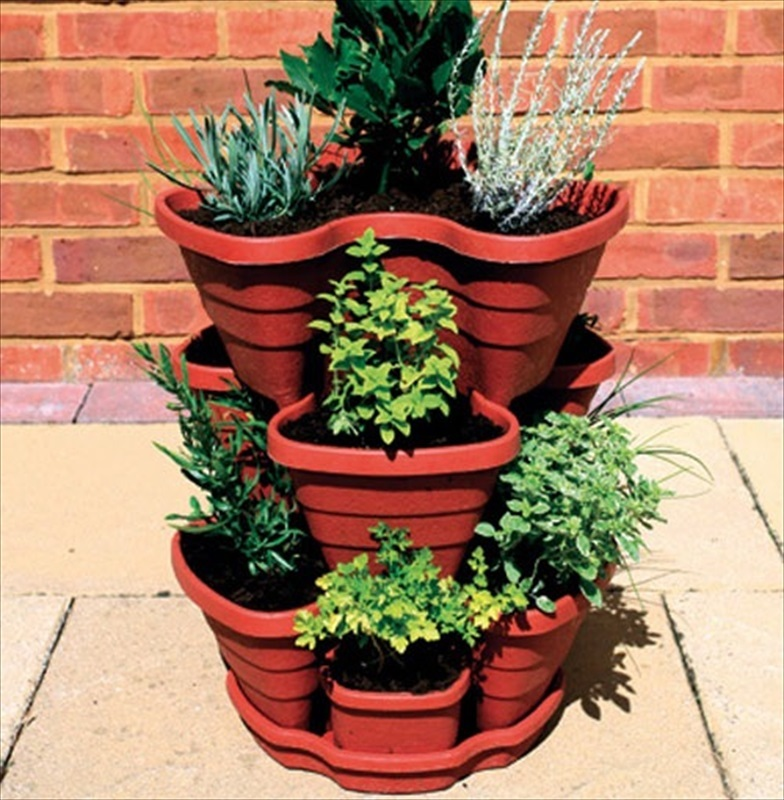 Letu0026#39;s Grow Strawberry / Herb Planter - The Garden Factory