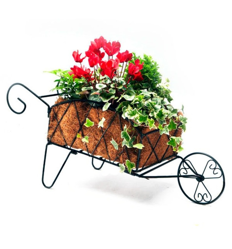 decorative wheelbarrow planter the garden factory