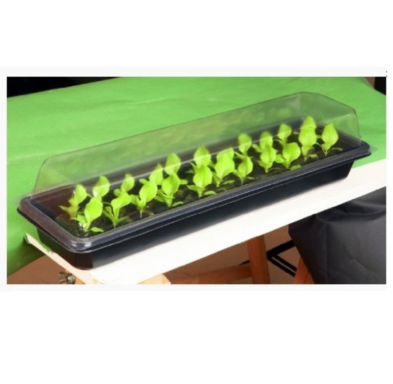 windowsill seed plant propagator kit the garden factory. Black Bedroom Furniture Sets. Home Design Ideas