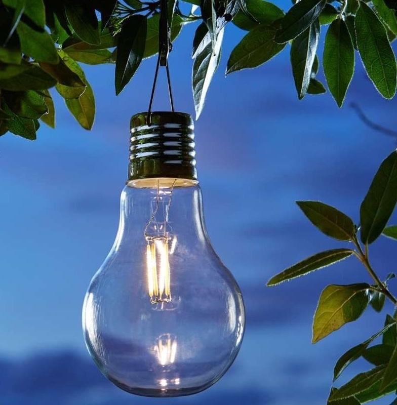 Eureka Light Bulb W Edison Filement The Garden Factory