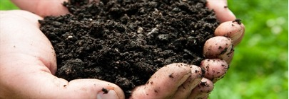 Compost and Fetilisers