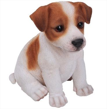 Jack Russell Puppy Baby Dog Pet Pal Garden Ornament