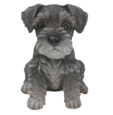 Schnauzer Puppy Baby Dog Pet Pal Garden Ornament