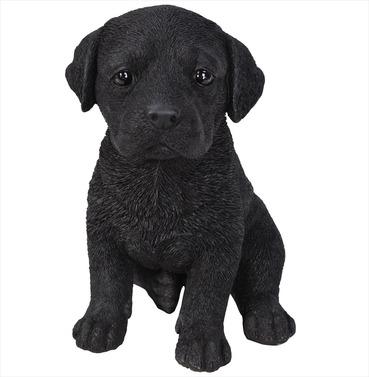 Labrador Puppy Baby Dog Pet Pal Garden Ornament
