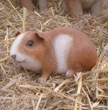 Guinea Pig Pet Pal Garden Ornament - Brown with White Body