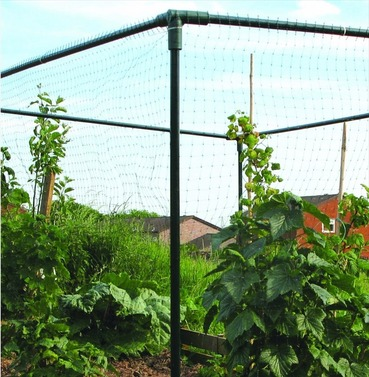 Crop Cage by Botanico Let's Grow - 1 x 1 x 1m