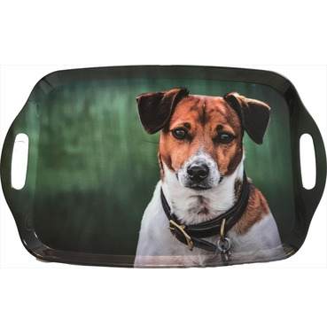 Jack Russell Tray - Country Matters Tea Tray