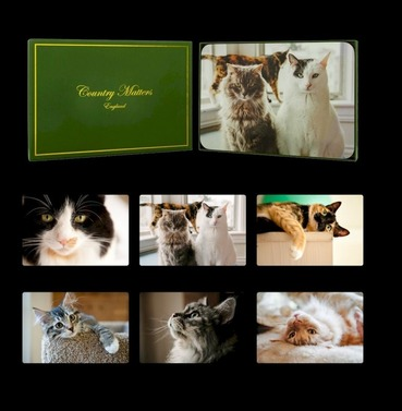 Cats Placemats - Set of 6 Designs  - Country Matters Place Mats