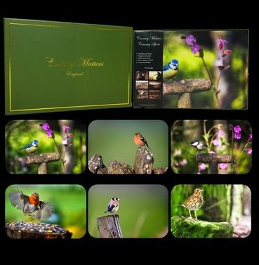 Garden Birds Placemats - Set of 6 Designs - Country Matters Place Mats